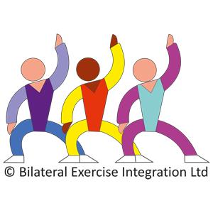 Bilateralna Integracja (grupowa, indywidualna)